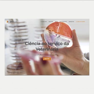 DNAtech, Website, Redes Sociais, Content Marketing, Webtexto